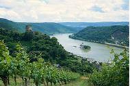 Immagine di Passau-Vienna in Relax