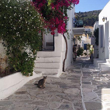 Immagine per la categoria Mar Egeo