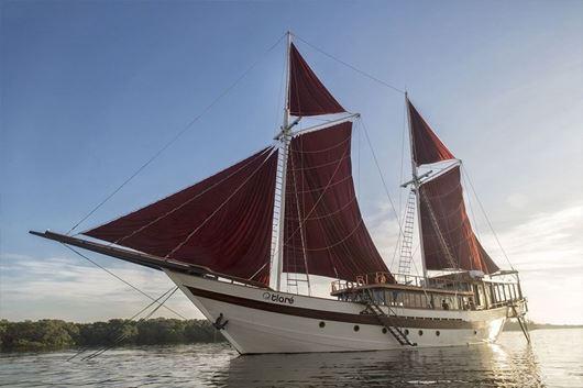 Immagine di Tiarè   Luxury sailing yacht   crociera in barca a vela   Indonesia
